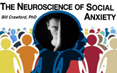 The Neuroscience of Social Anxiety